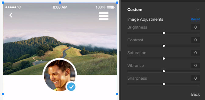 Image adjustments in the UXPin editor
